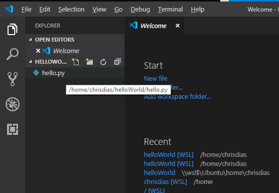 The VSCode IDE using Linux paths